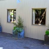 hopbushbushmorningglorycontainers-002