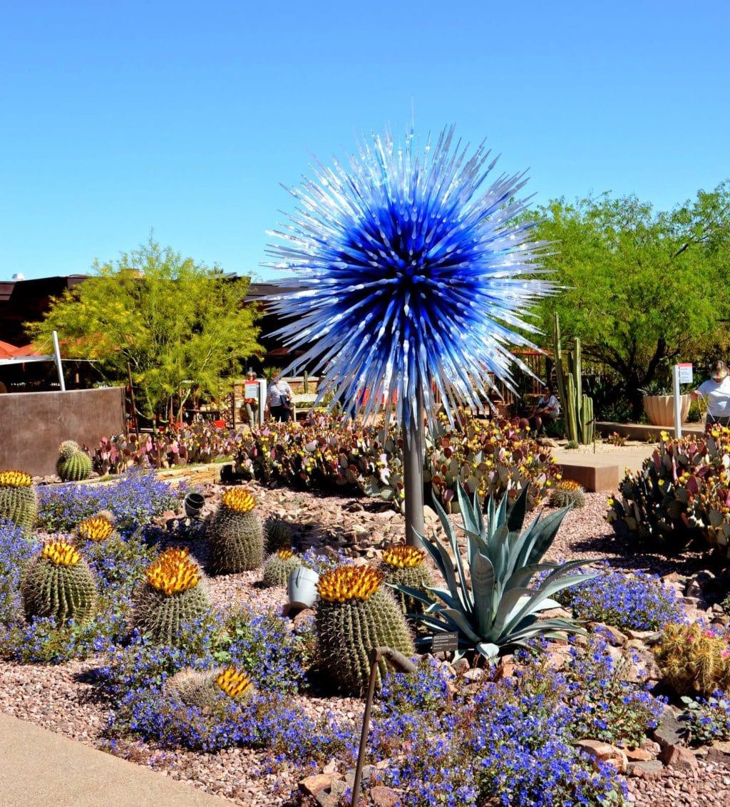 Chihuly Art In The Desert Garden Ramblings From A Desert
