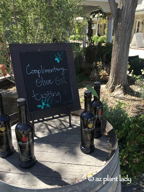 wine tasting rooms, stores offering olive oil tasting
